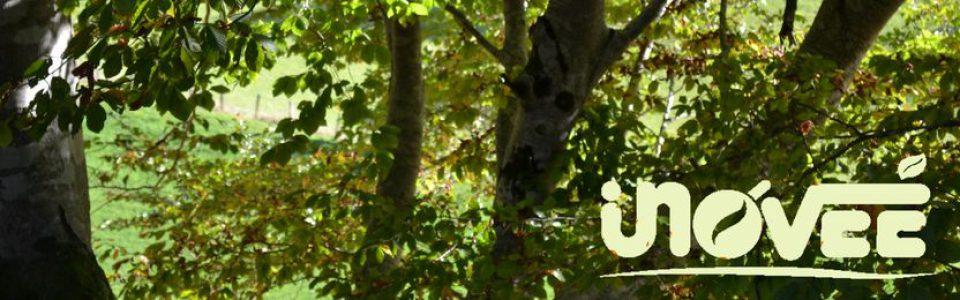 Initiative Nord Ouest Vendée Environnement Écologie